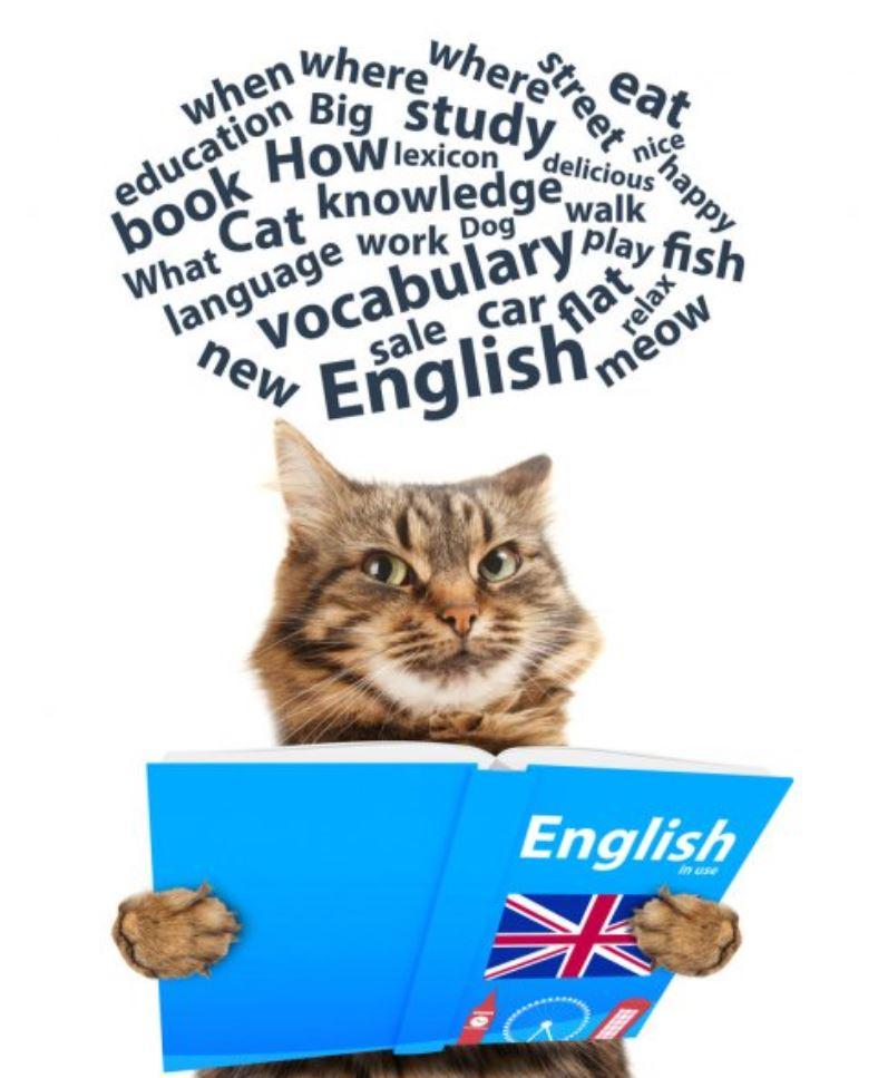 Думать на английском